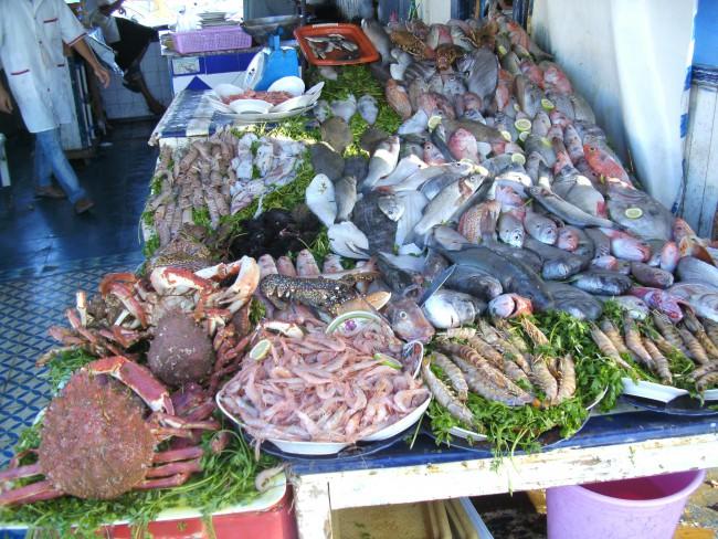 Fish in Safi market in Morocco