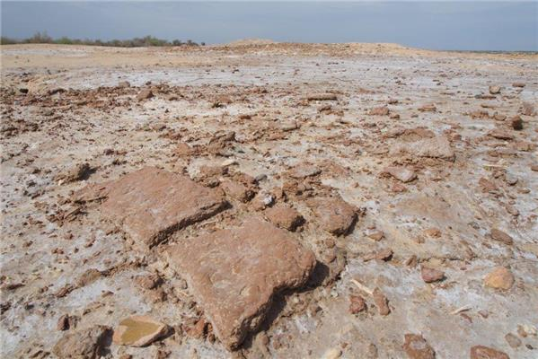 Iran - MPC Journal - Pottery shards at a newly-discovered settlement on the Jiroft plain.