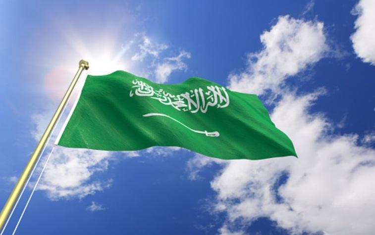 Creating Frankenstein: Saudi Arabia's Ultra-Conservative Footprint in Africa, Creating Frankenstein: Saudi Arabia's Ultra-Conservative Footprint in Africa