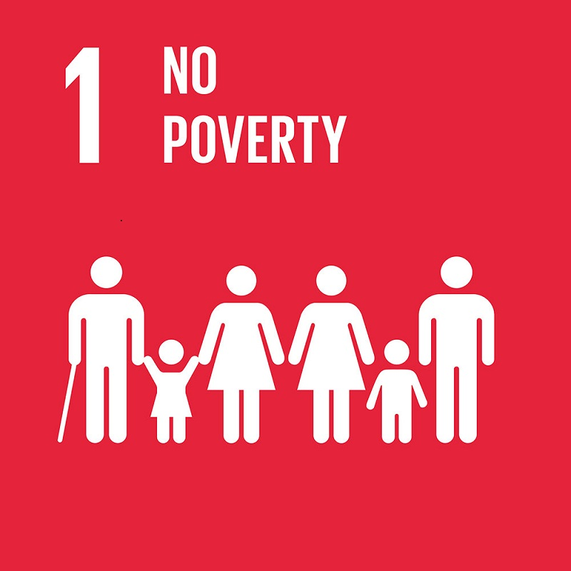 Poverty Impedes Global Sustainable Development, Poverty Impedes Global Sustainable Development