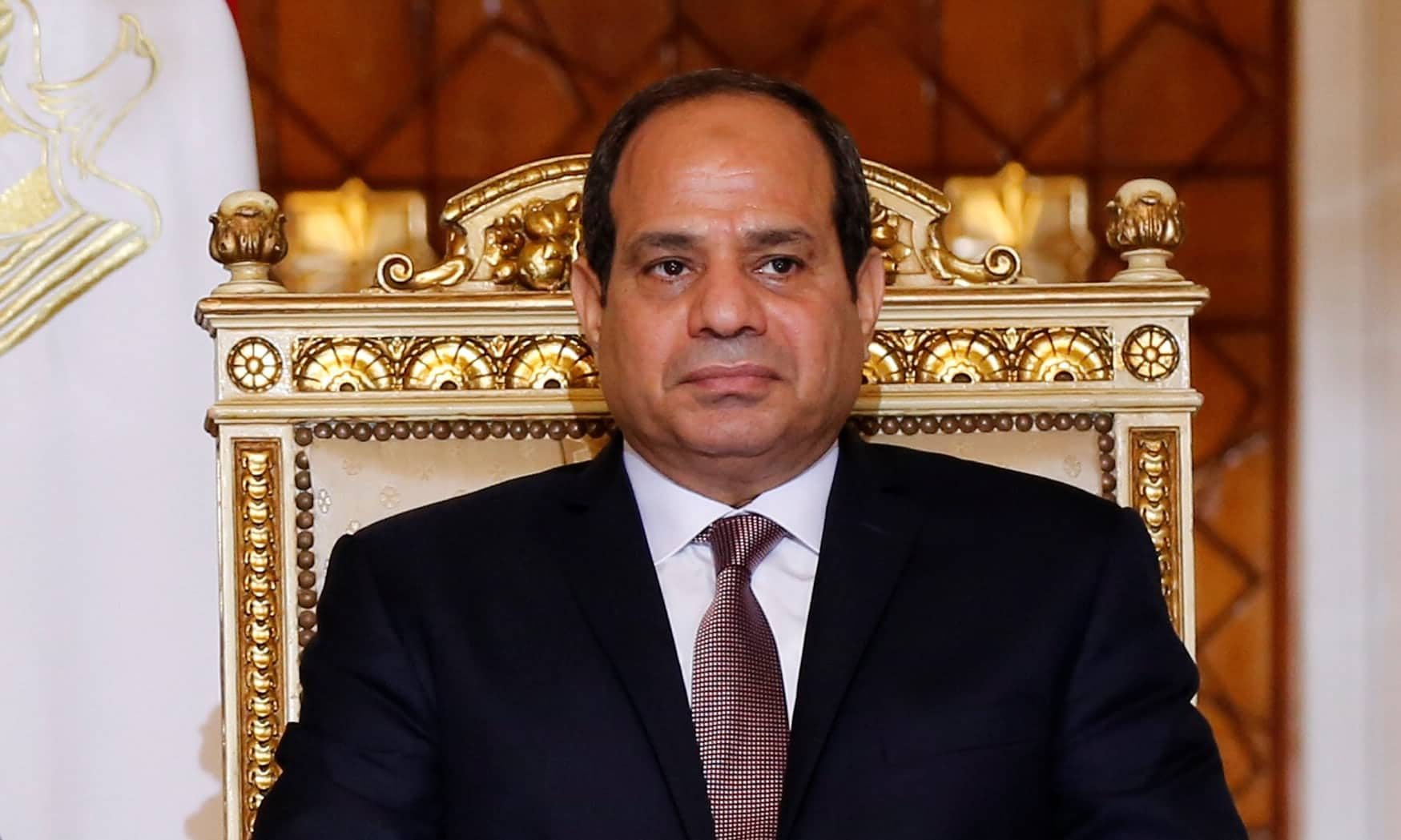Sisi's Efforts to Remain in Power, Sisi's Efforts to Remain in Power