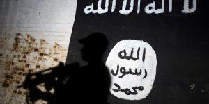 The Virtual Islamic State, The Virtual Islamic State