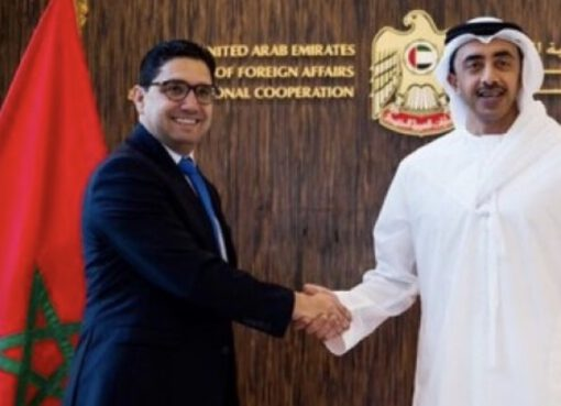 UAE Discusses Moroccan Sahara with Morocco